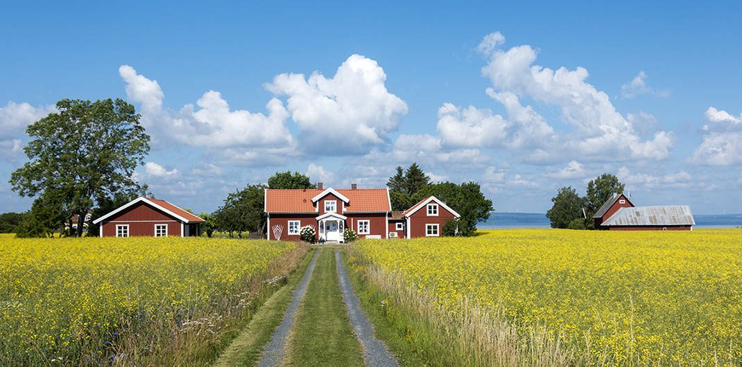 buying a house in a rural area