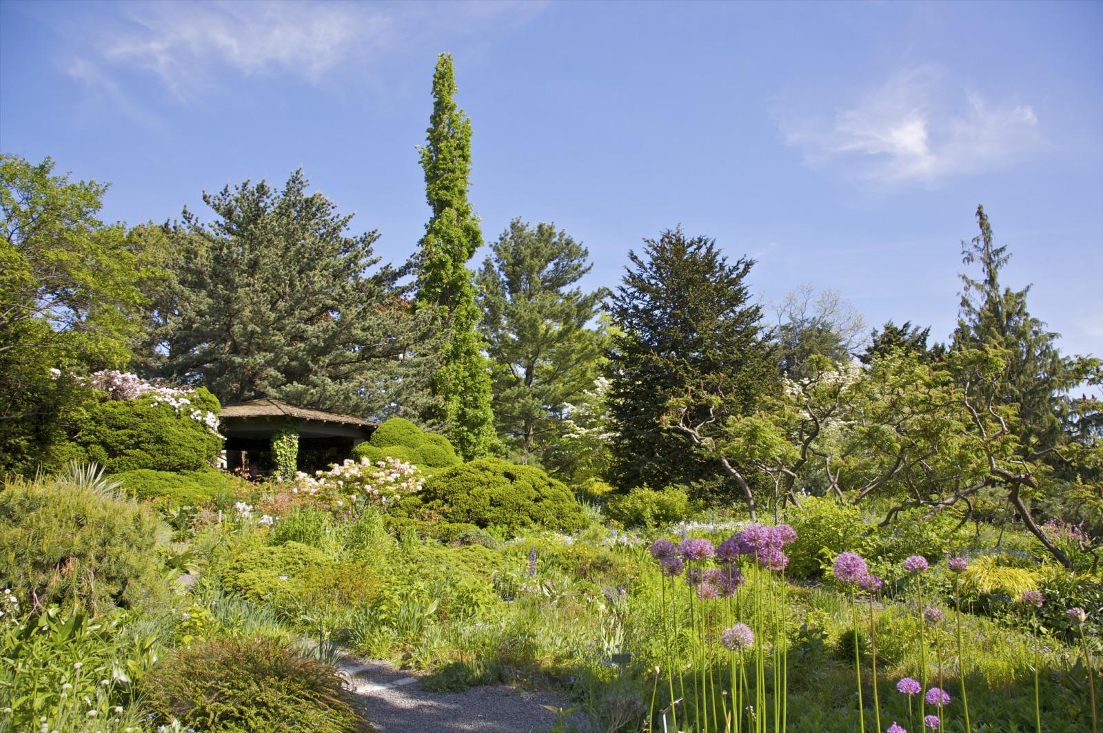 lush greenery in Wave Hill Garden in Riverdale, Bronx