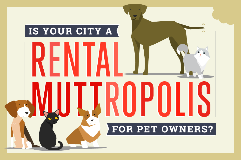 Is Your City a Rental Muttropolis for Pet Owners?