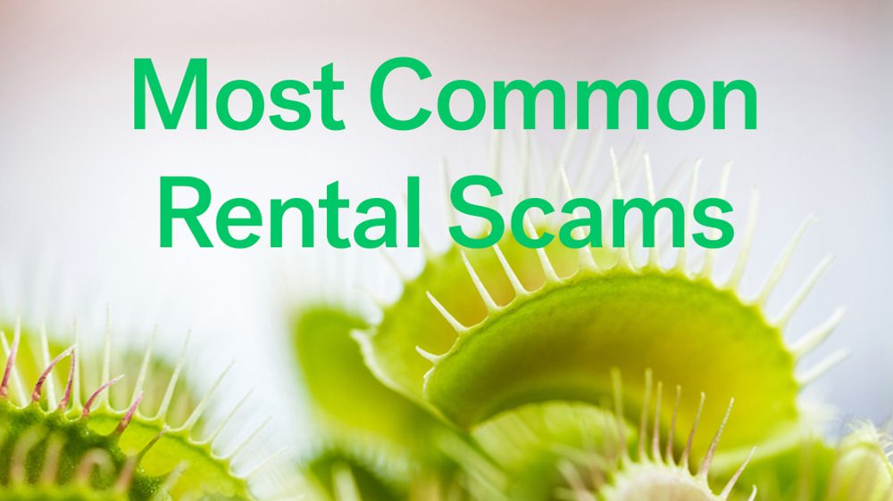 common rental scams