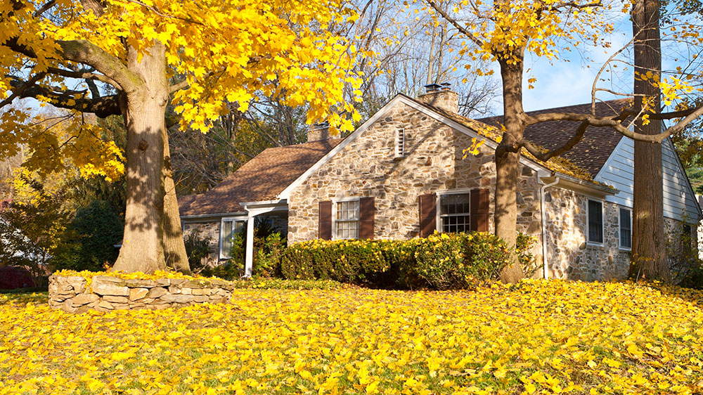house for sale on the fall real estate market